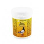 Productos para palomas: Bony Recovery caps, (para una recuperación total después del vuelo)