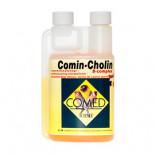 Comed Comin-Cholin 250 ml (protege el hígado y purifica el organismo)