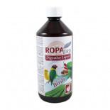 Productos para pájaros: Ropa Bird Digestive Liquid 1L, (para una salud intestinal perfecta)