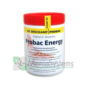 Produtos Dr. Brockamp para pombos de correio, Probac Energy