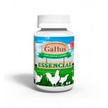 Gallus Essential 250 gr, (Vitaminas e minerais que melhoram a condição física). Para aves domésticas