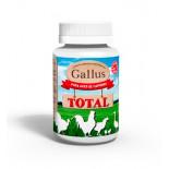 Gallus Total 200 ml, (Vitaminas e minerais que melhoram a condição física). Para aves domésticas