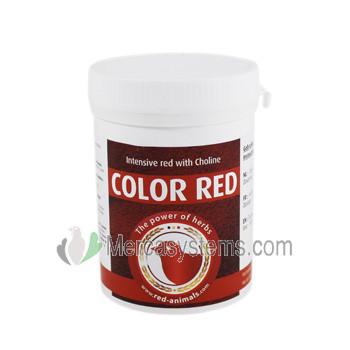 Productos para pájaros: The Red Pigeon Color Red 100gr, (colorante rojo intenso de alta calidad). Para pájaros