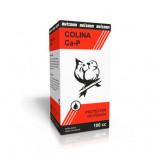 Colina Ca-P 100ml de Avizoon (problemas de hígado y digestivos).