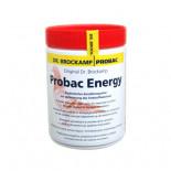 Probac Energy 500gr (probiotique Energizer pour augmenter l'endurance pendant Voyage, l'élevage et la mue). Pour Pigeons