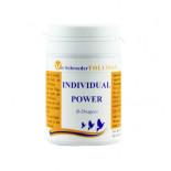 Tollisan Individual Power Pilules, (Pilule d'énergie possible pour le pouvoir sur les vols longue distance). POur Pigeons