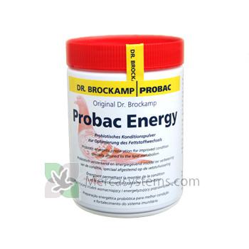 Probac Energy 500gr (probiotici Energizer per aumentare la resistenza durante il viaggio, l'allevamento e la muta). Per Piccioni.