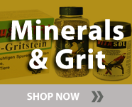 minerals & grit for birds