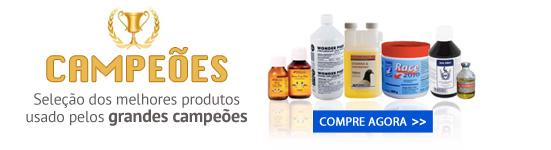 productos de exito internacional