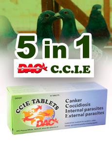 Dac CCIE Tablets, 5 en 1 para palomas