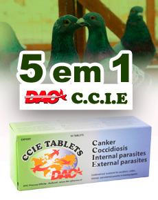 Dac CCIE Tablets, 5 em 1 para pombos