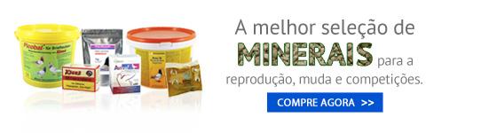 Minerales para os pombos