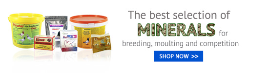 Minerals for Pigeons products