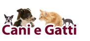 productos para perros y gatos