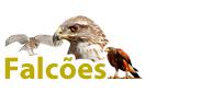 productos para halcones y rapaces
