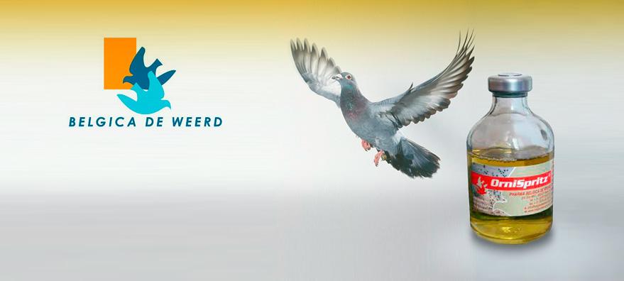 ornispritz pigeon product