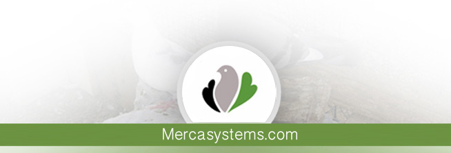 Mercasystems blog