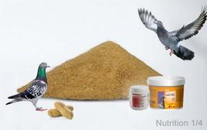 nutricion_parte1